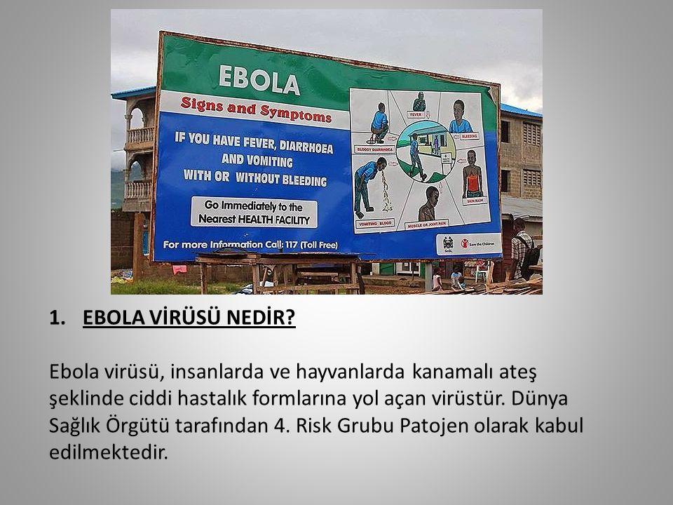 1.EBOLA VİRÜSÜ NEDİR? Ebola virüsü, insanlarda ve hayvanlarda kanamalı ateş şeklinde ciddi hastalık formlarına yol açan virüstür. Dünya Sağlık Örgütü