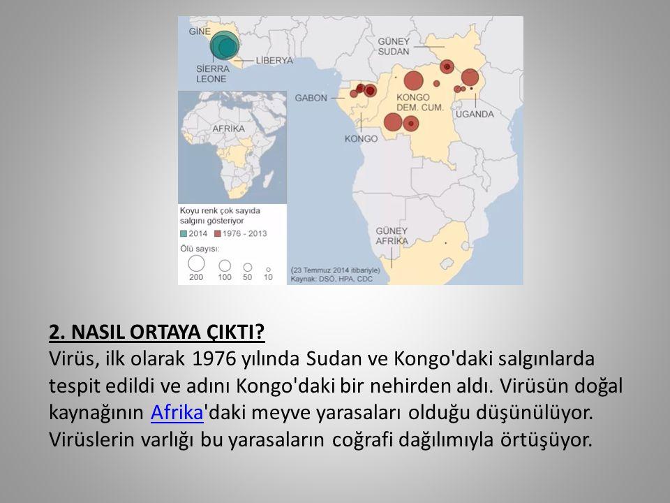 2. NASIL ORTAYA ÇIKTI? Virüs, ilk olarak 1976 yılında Sudan ve Kongo'daki salgınlarda tespit edildi ve adını Kongo'daki bir nehirden aldı. Virüsün doğ