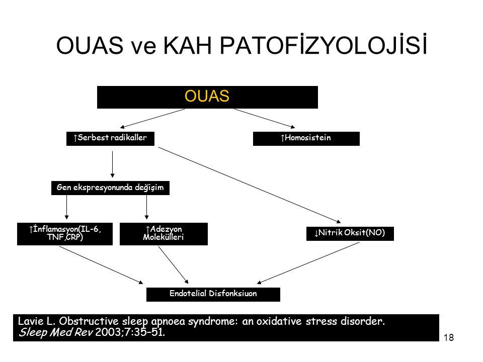 18 OUAS ve KAH PATOFİZYOLOJİSİ OUAS Lavie L. Obstructive sleep apnoea syndrome: an oxidative stress disorder. Sleep Med Rev 2003;7:35–51. ↑ Serbest ra