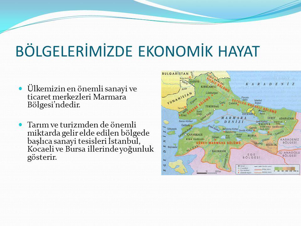 BÖLGELERİMİZDE EKONOMİK HAYAT Ülkemizin en önemli sanayi ve ticaret merkezleri Marmara Bölgesi'ndedir. Tarım ve turizmden de önemli miktarda gelir eld