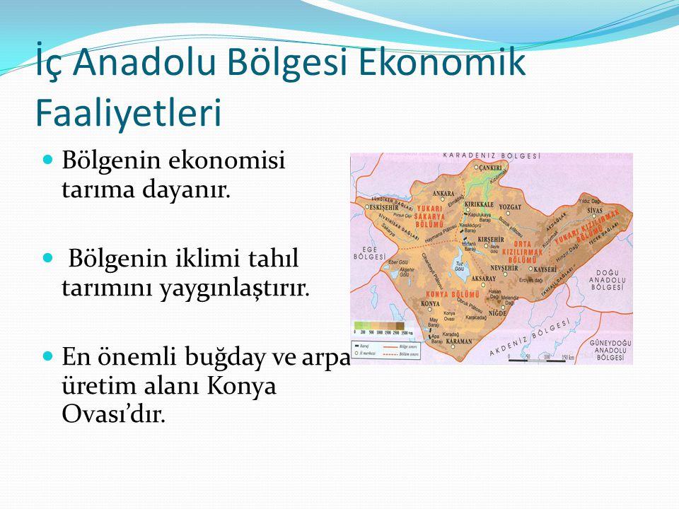 İç Anadolu Bölgesi Ekonomik Faaliyetleri Bölgenin ekonomisi tarıma dayanır. Bölgenin iklimi tahıl tarımını yaygınlaştırır. En önemli buğday ve arpa ür