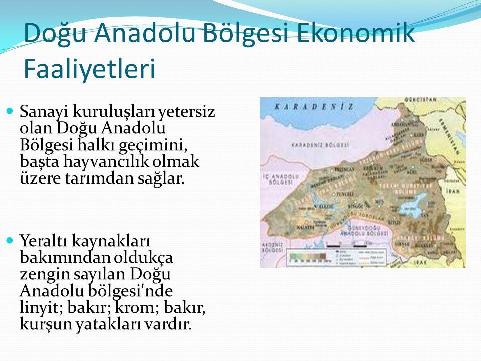 Doğu Anadolu Bölgesi Ekonomik Faaliyetleri Sanayi kuruluşları yetersiz olan Doğu Anadolu Bölgesi halkı geçimini, başta hayvancılık olmak üzere tarımda
