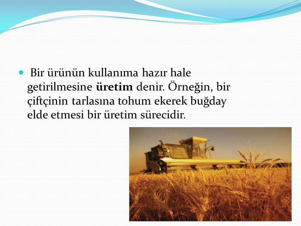 Bir ürünün kullanıma hazır hale getirilmesine üretim denir. Örneğin, bir çiftçinin tarlasına tohum ekerek buğday elde etmesi bir üretim sürecidir.