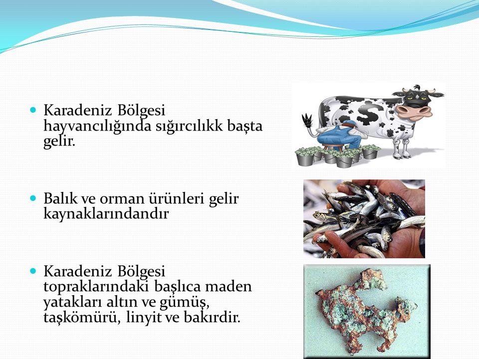 Karadeniz Bölgesi hayvancılığında sığırcılıkk başta gelir. Balık ve orman ürünleri gelir kaynaklarındandır Karadeniz Bölgesi topraklarındaki başlıca m