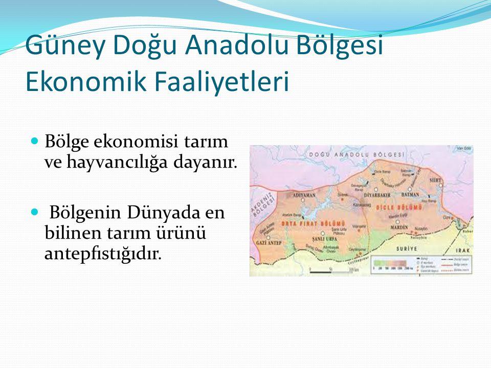 Güney Doğu Anadolu Bölgesi Ekonomik Faaliyetleri Bölge ekonomisi tarım ve hayvancılığa dayanır. Bölgenin Dünyada en bilinen tarım ürünü antepfıstığıdı