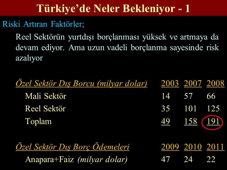 Türkiye'de Neler Bekleniyor - 1 Riski Artıran Faktörler; Reel Sektörün yurtdışı borçlanması yüksek ve artmaya da devam ediyor.