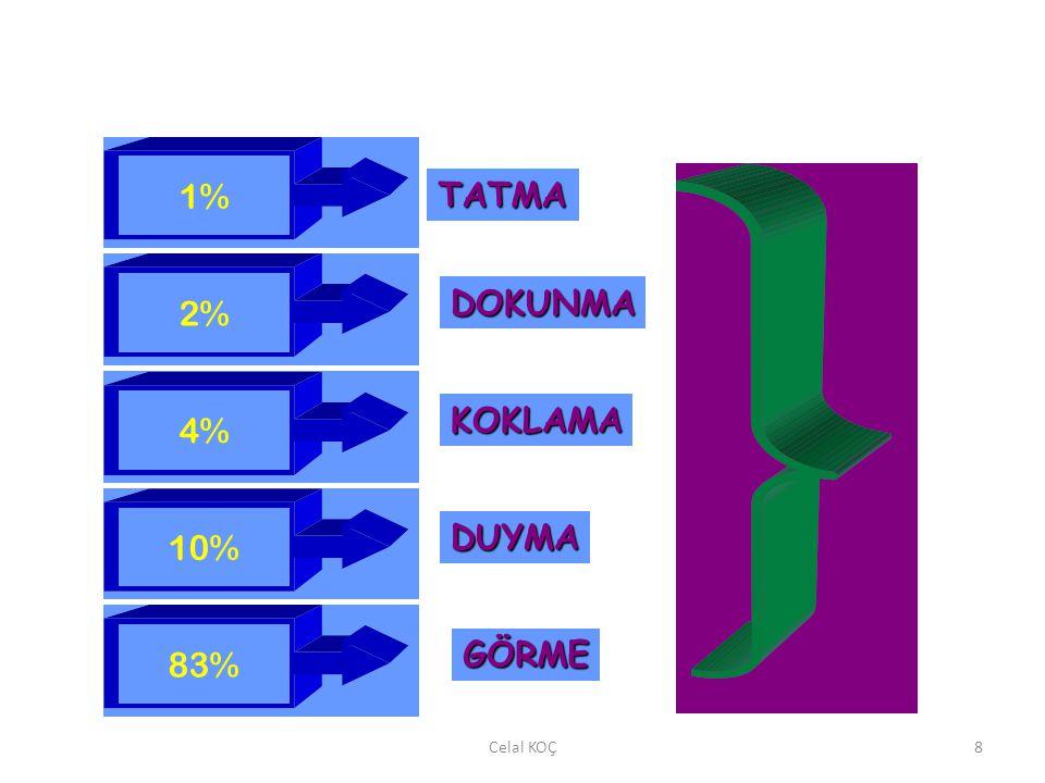 Celal KOÇ8 1% 2% 4% 10% 83% TATMA DOKUNMA KOKLAMA DUYMA GÖRME
