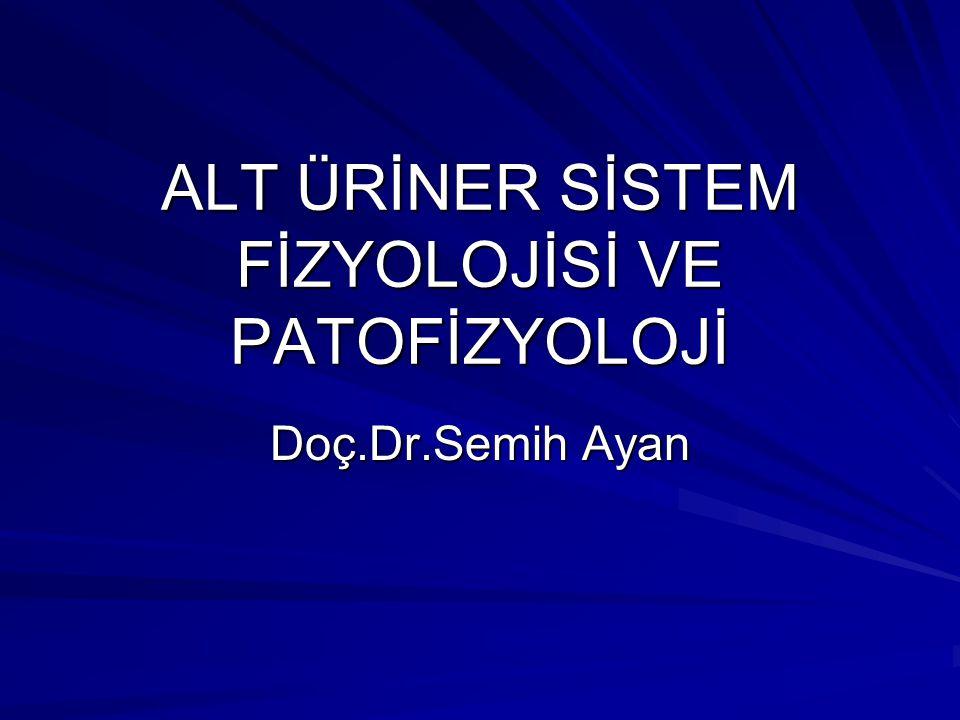 ALT ÜRİNER SİSTEM FİZYOLOJİSİ VE PATOFİZYOLOJİ Doç.Dr.Semih Ayan