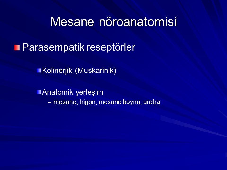 Mesane nöroanatomisi Parasempatik reseptörler Kolinerjik (Muskarinik) Anatomik yerleşim – –mesane, trigon, mesane boynu, uretra