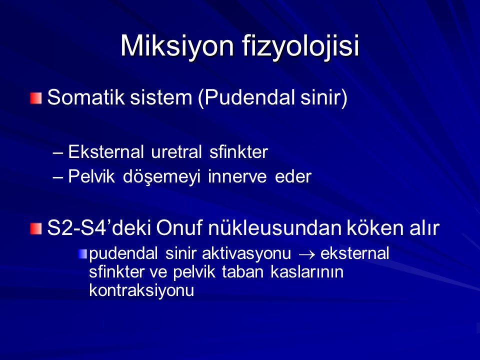 Miksiyon fizyolojisi Somatik sistem (Pudendal sinir) – –Eksternal uretral sfinkter – –Pelvik döşemeyi innerve eder S2-S4'deki Onuf nükleusundan köken alır pudendal sinir aktivasyonu  eksternal sfinkter ve pelvik taban kaslarının kontraksiyonu