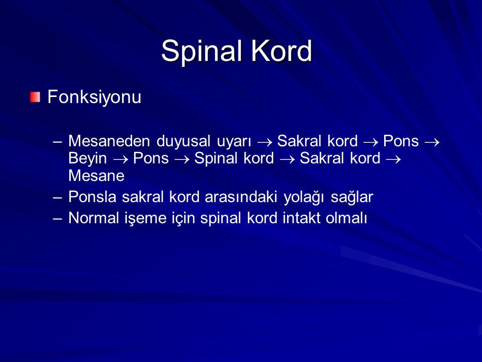 Spinal Kord Fonksiyonu – –Mesaneden duyusal uyarı  Sakral kord  Pons  Beyin  Pons  Spinal kord  Sakral kord  Mesane – –Ponsla sakral kord arasındaki yolağı sağlar – –Normal işeme için spinal kord intakt olmalı