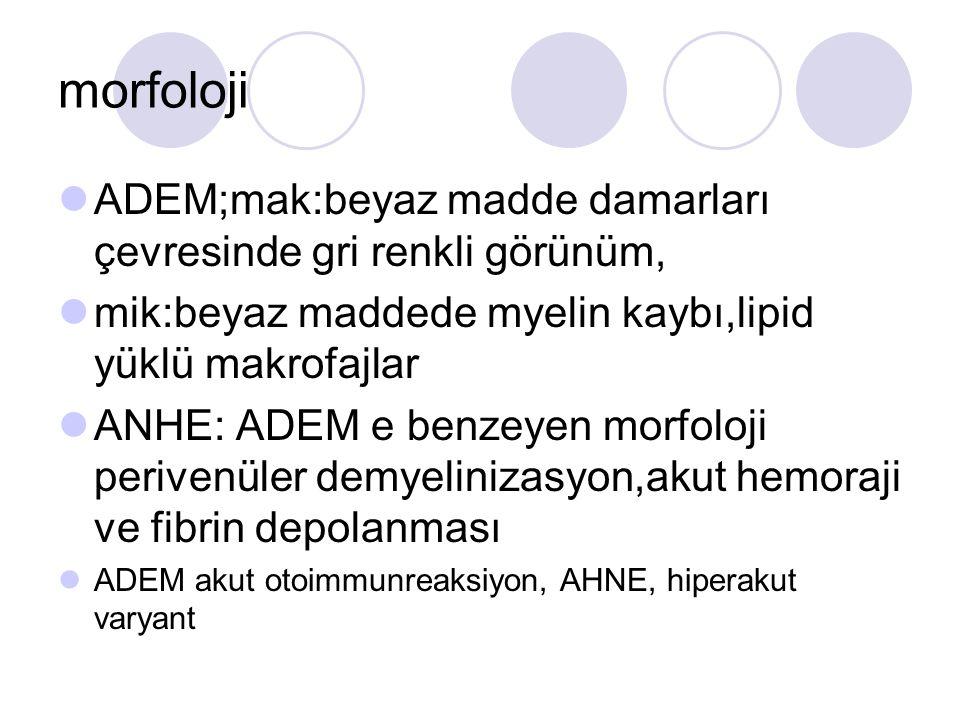 morfoloji ADEM;mak:beyaz madde damarları çevresinde gri renkli görünüm, mik:beyaz maddede myelin kaybı,lipid yüklü makrofajlar ANHE: ADEM e benzeyen morfoloji perivenüler demyelinizasyon,akut hemoraji ve fibrin depolanması ADEM akut otoimmunreaksiyon, AHNE, hiperakut varyant