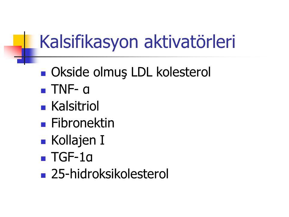 Kalsifikasyon aktivatörleri Okside olmuş LDL kolesterol TNF- α Kalsitriol Fibronektin Kollajen I TGF-1α 25-hidroksikolesterol
