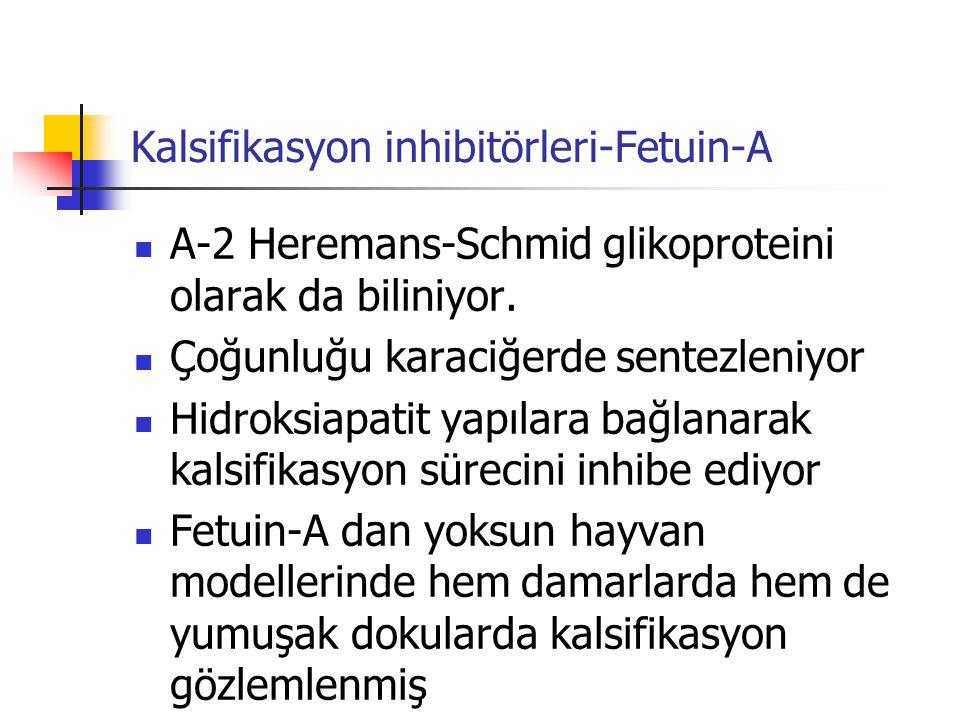 Kalsifikasyon inhibitörleri-Fetuin-A Α-2 Heremans-Schmid glikoproteini olarak da biliniyor. Çoğunluğu karaciğerde sentezleniyor Hidroksiapatit yapılar