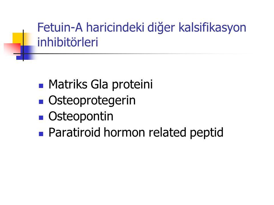 Fetuin-A haricindeki diğer kalsifikasyon inhibitörleri Matriks Gla proteini Osteoprotegerin Osteopontin Paratiroid hormon related peptid