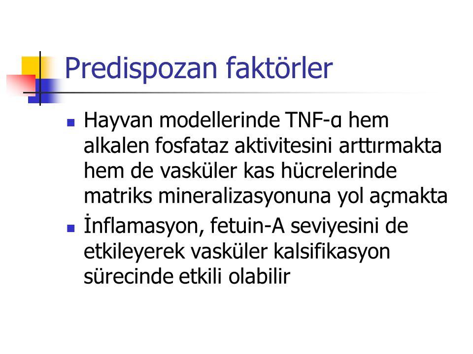 Predispozan faktörler Hayvan modellerinde TNF-α hem alkalen fosfataz aktivitesini arttırmakta hem de vasküler kas hücrelerinde matriks mineralizasyonu