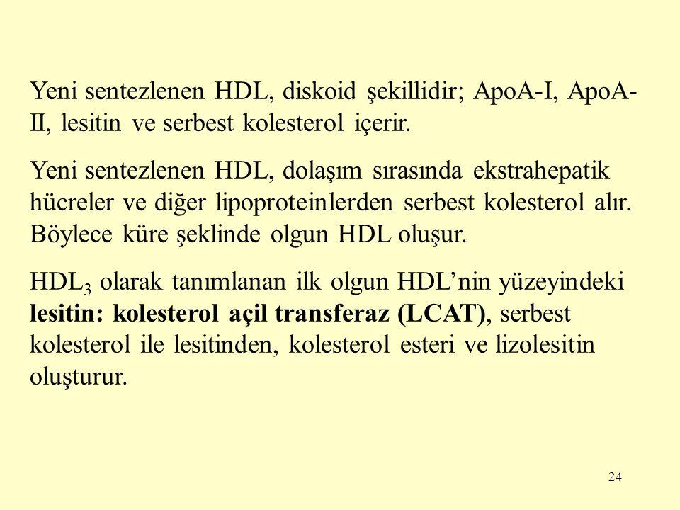 24 Yeni sentezlenen HDL, diskoid şekillidir; ApoA-I, ApoA- II, lesitin ve serbest kolesterol içerir.