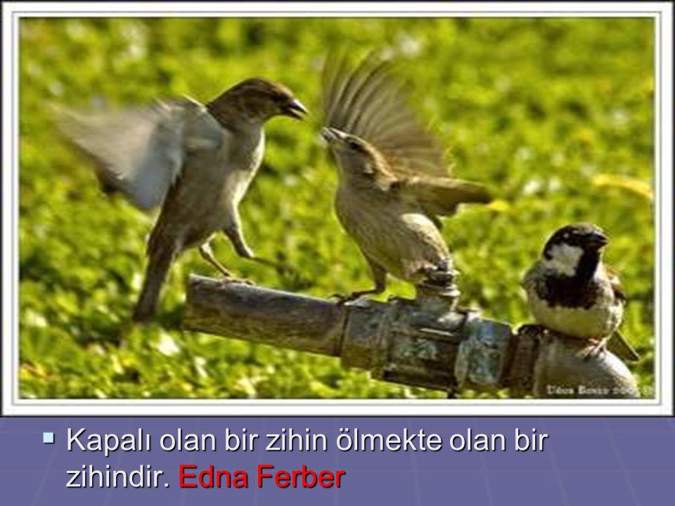  Kapalı olan bir zihin ölmekte olan bir zihindir. Edna Ferber