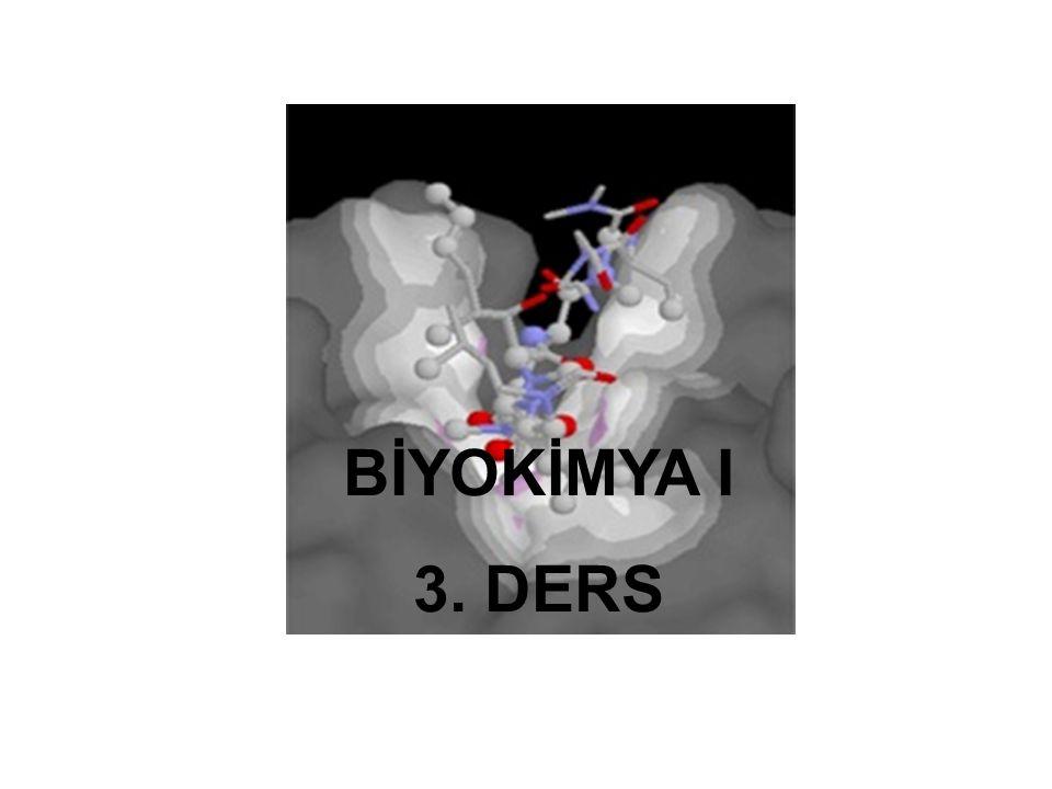Amfipatik moleküllerin sıvı içindeki davranışları