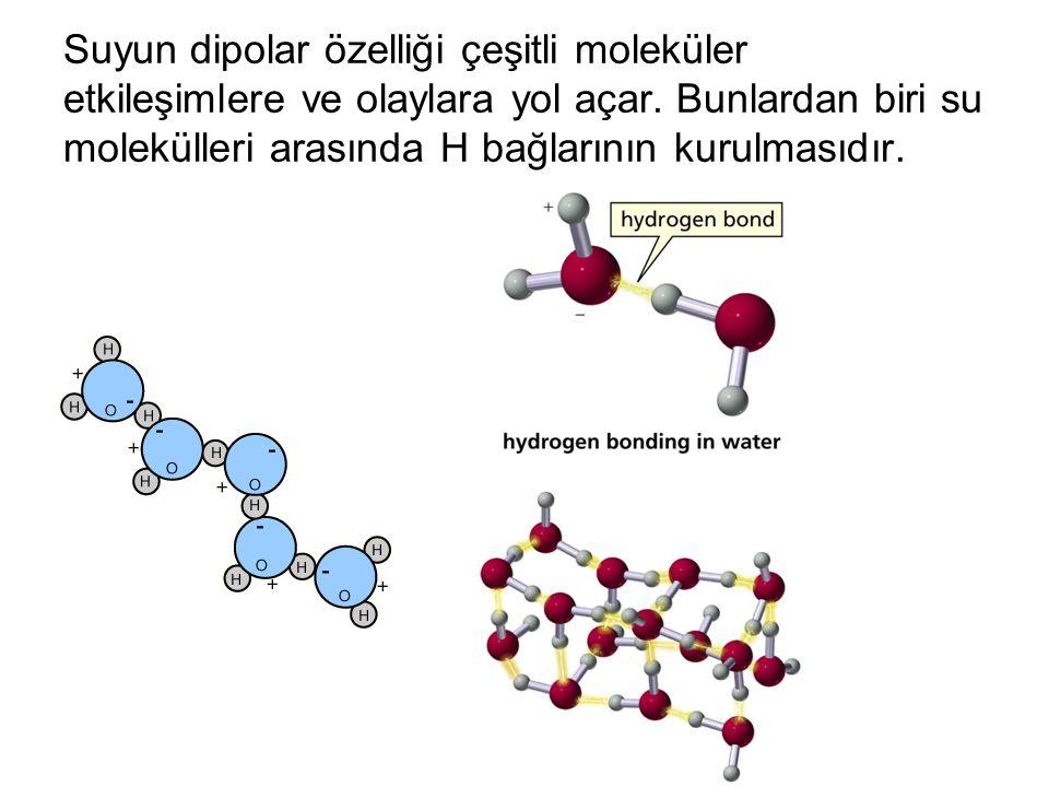 Suyun dipolar özelliği çeşitli moleküler etkileşimlere ve olaylara yol açar. Bunlardan biri su molekülleri arasında H bağlarının kurulmasıdır.
