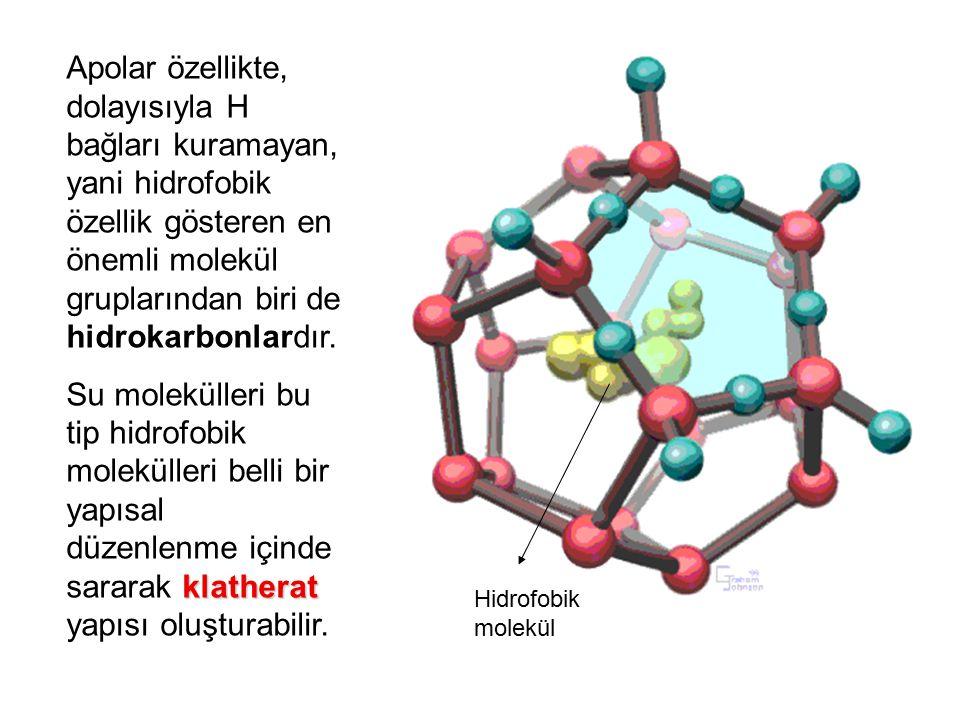 Hidrofobik molekül Apolar özellikte, dolayısıyla H bağları kuramayan, yani hidrofobik özellik gösteren en önemli molekül gruplarından biri de hidrokar