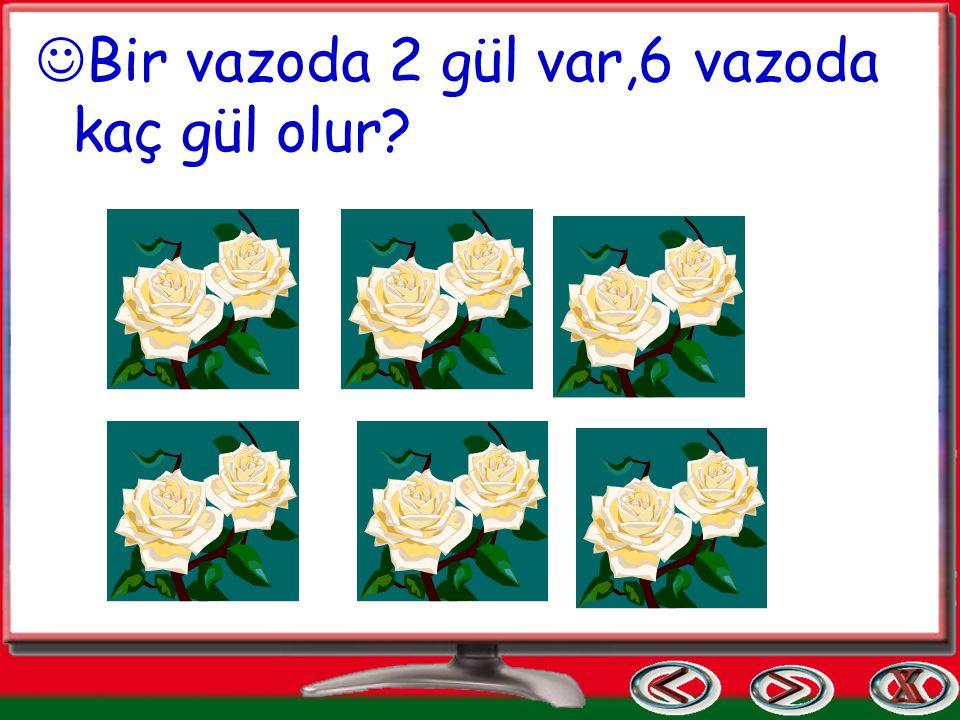 Bana altı(6) derler ben ikinin kaç katıyım? 2 x … = 6