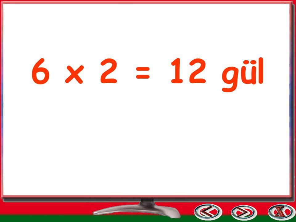 6 x 2 = 12 gül