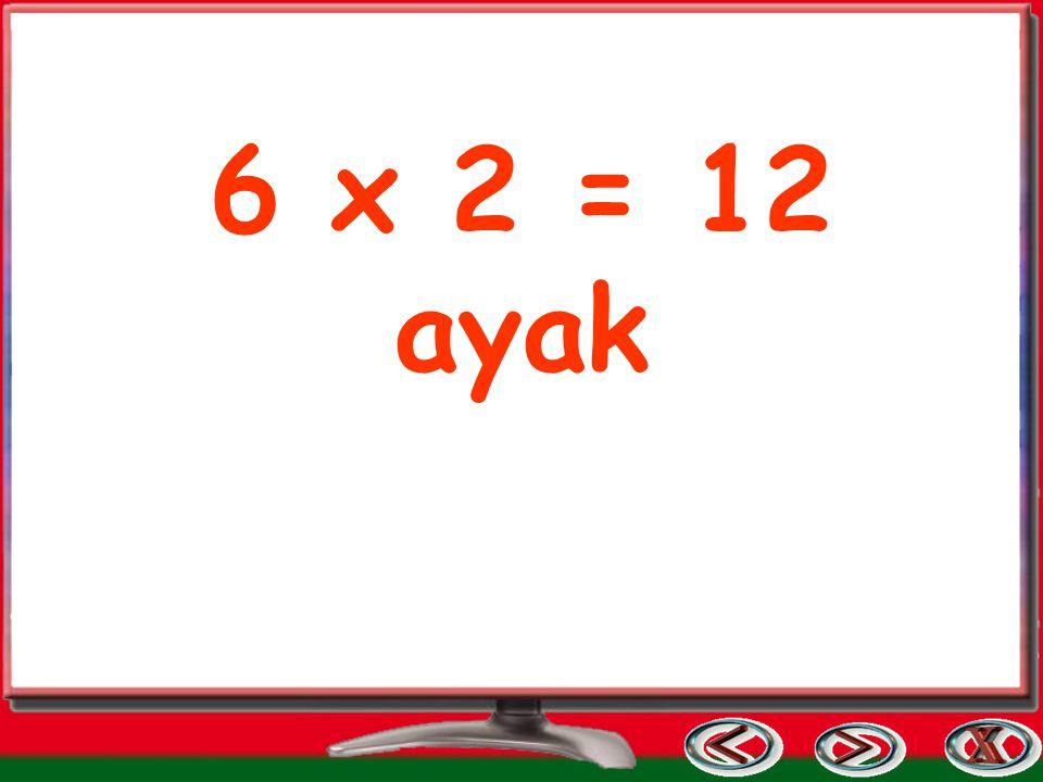 6 x 2 = 12 ayak