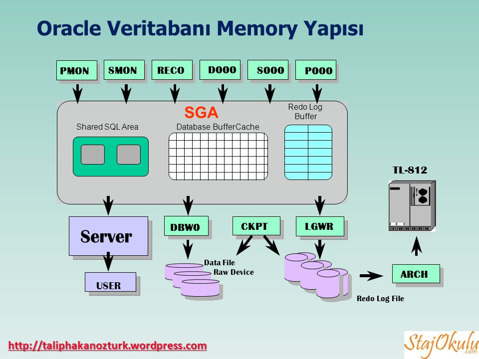 Oracle Veritabanı Memory Yapısı SGA Shared SQL AreaDatabase Buffer CacheRedo Log Buffer PMON LGWR Data File Raw Device Server USER ARCH TL-812 Redo Lo
