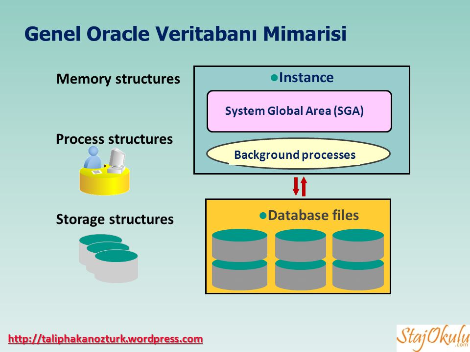 10 Storage structures Memory structures Process structures Instance System Global Area (SGA) Background processes Database files Genel Oracle Veritaba