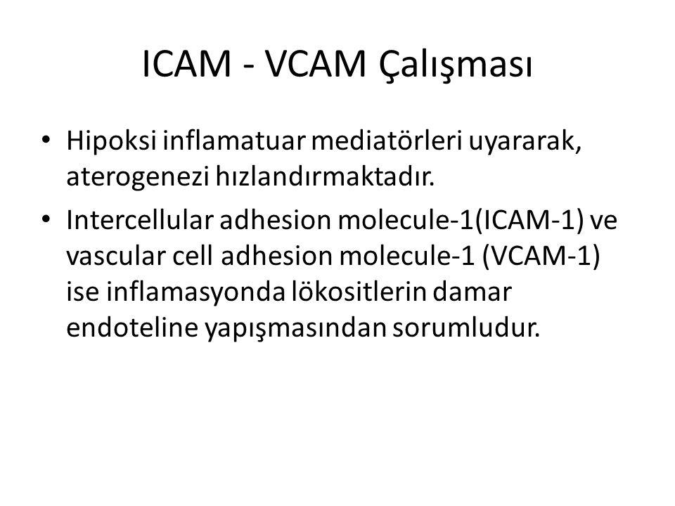 ICAM - VCAM Çalışması Hipoksi inflamatuar mediatörleri uyararak, aterogenezi hızlandırmaktadır. Intercellular adhesion molecule-1(ICAM-1) ve vascular