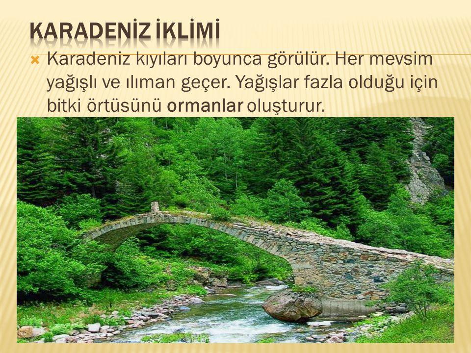  Karadeniz kıyıları boyunca görülür. Her mevsim yağışlı ve ılıman geçer. Yağışlar fazla olduğu için bitki örtüsünü ormanlar oluşturur.