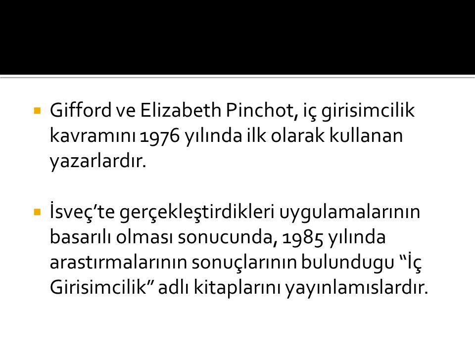  Gifford ve Elizabeth Pinchot, iç girisimcilik kavramını 1976 yılında ilk olarak kullanan yazarlardır.  İsveç'te gerçekleştirdikleri uygulamalarının