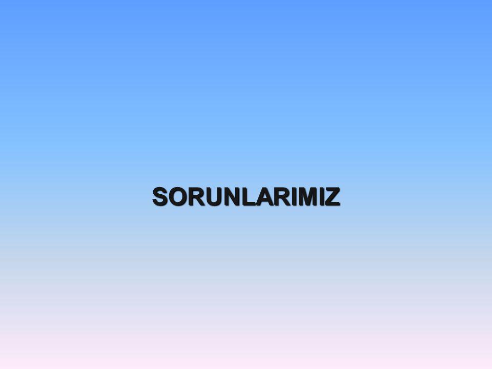 SORUNLARIMIZ