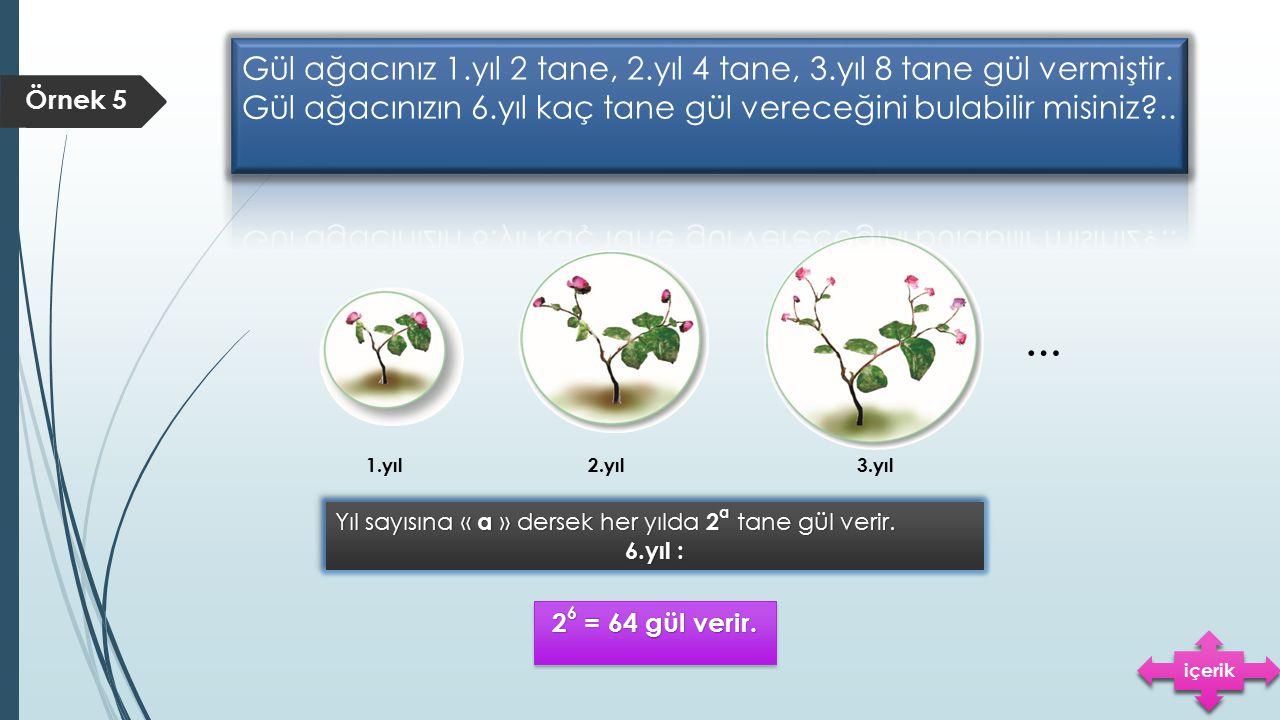 Örnek 5 … 1.yıl2.yıl3.yıl Yıl sayısına « a » dersek her yılda 2 a tane gül verir. 6.yıl : Yıl sayısına « a » dersek her yılda 2 a tane gül verir. 6.yı