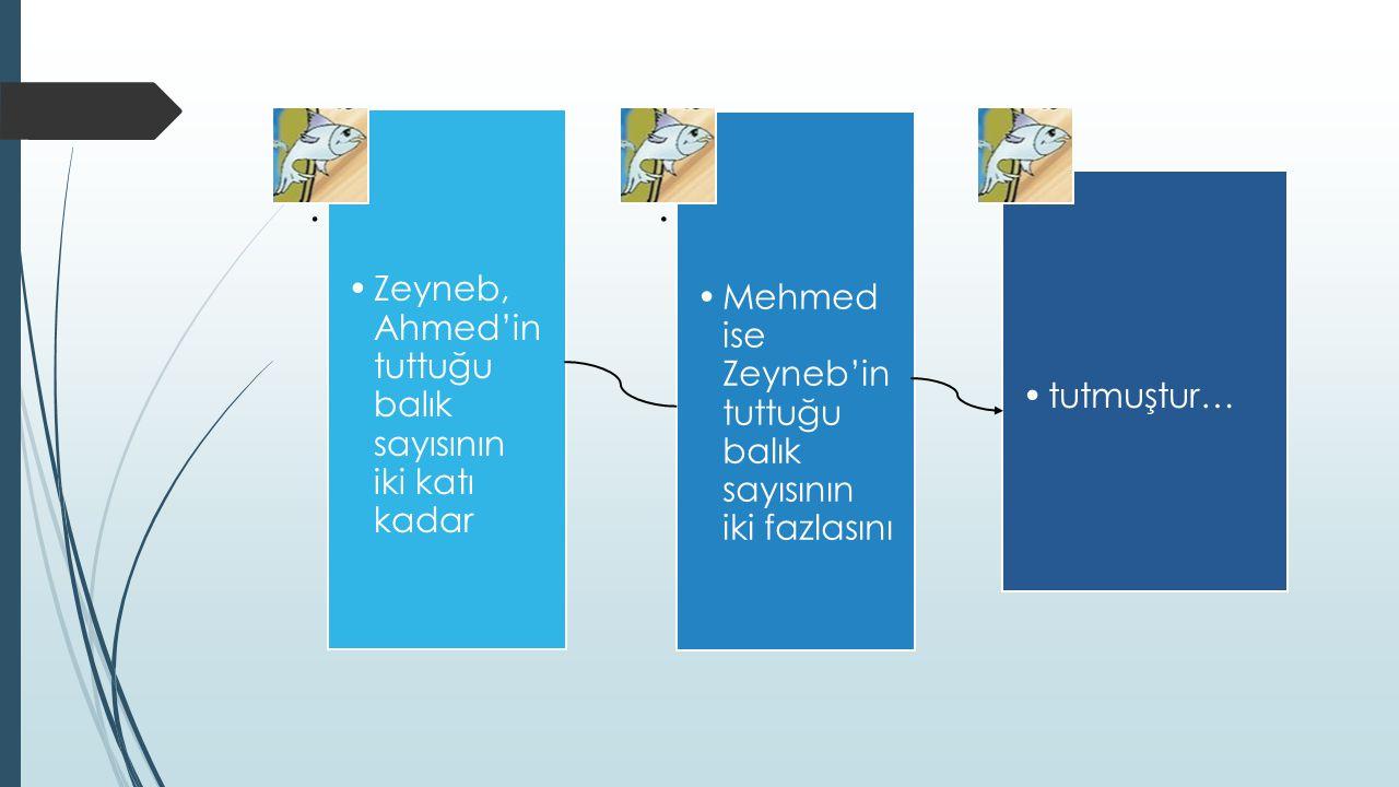 . Zeyneb, Ahmed'in tuttuğu balık sayısının iki katı kadar. Mehmed ise Zeyneb'in tuttuğu balık sayısının iki fazlasını. tutmuştur…