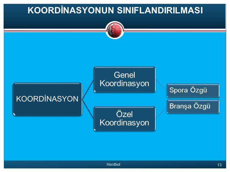 KOORDİNASYONUN SINIFLANDIRILMASI Hentbol 13