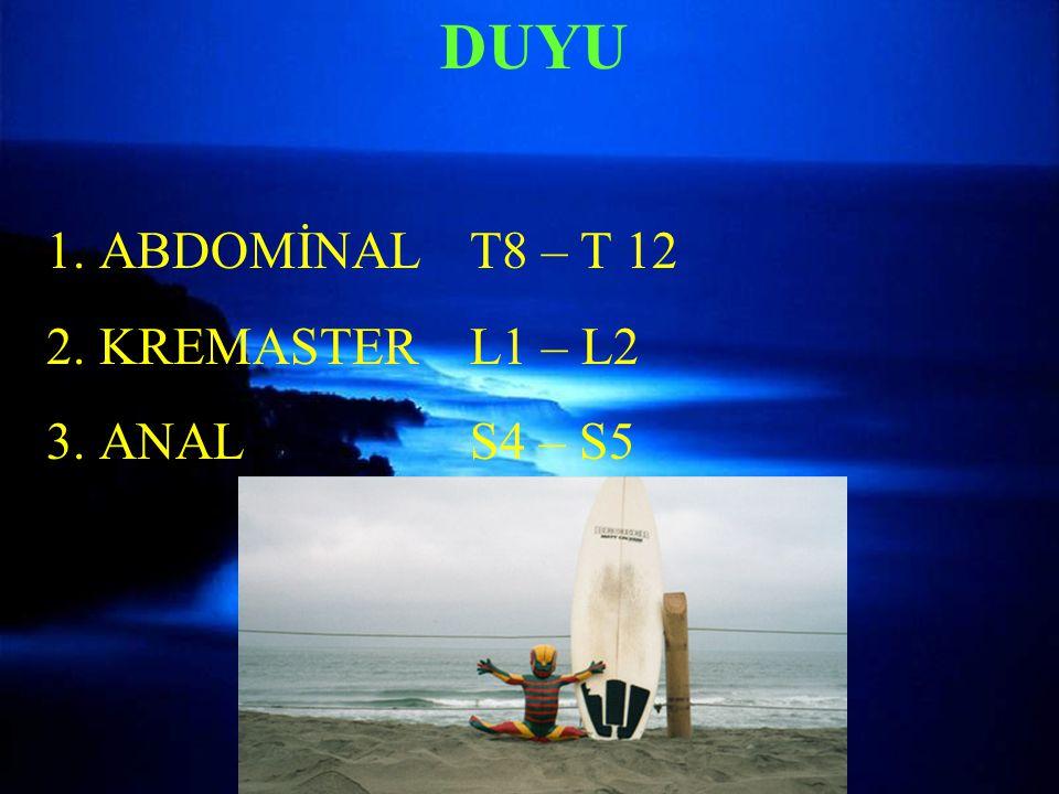 DUYU 1.ABDOMİNAL T8 – T 12 2.KREMASTERL1 – L2 3.ANALS4 – S5