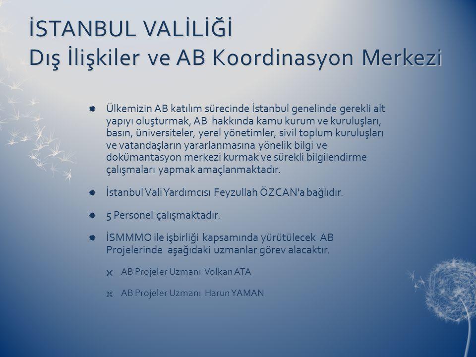 İSTANBUL VALİLİĞİ Dış İlişkiler ve AB Koordinasyon Merkezi  Ülkemizin AB katılım sürecinde İstanbul genelinde gerekli alt yapıyı oluşturmak, AB hakkında kamu kurum ve kuruluşları, basın, üniversiteler, yerel yönetimler, sivil toplum kuruluşları ve vatandaşların yararlanmasına yönelik bilgi ve dokümantasyon merkezi kurmak ve sürekli bilgilendirme çalışmaları yapmak amaçlanmaktadır.