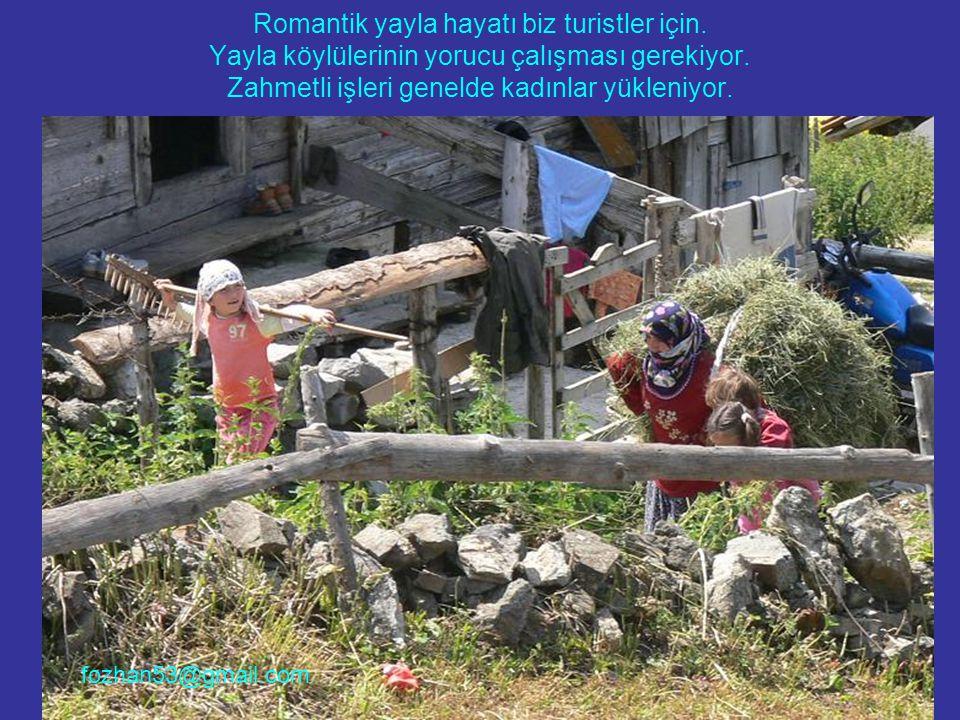 Romantik yayla hayatı biz turistler için. Yayla köylülerinin yorucu çalışması gerekiyor. Zahmetli işleri genelde kadınlar yükleniyor. fozhan53@gmail.c