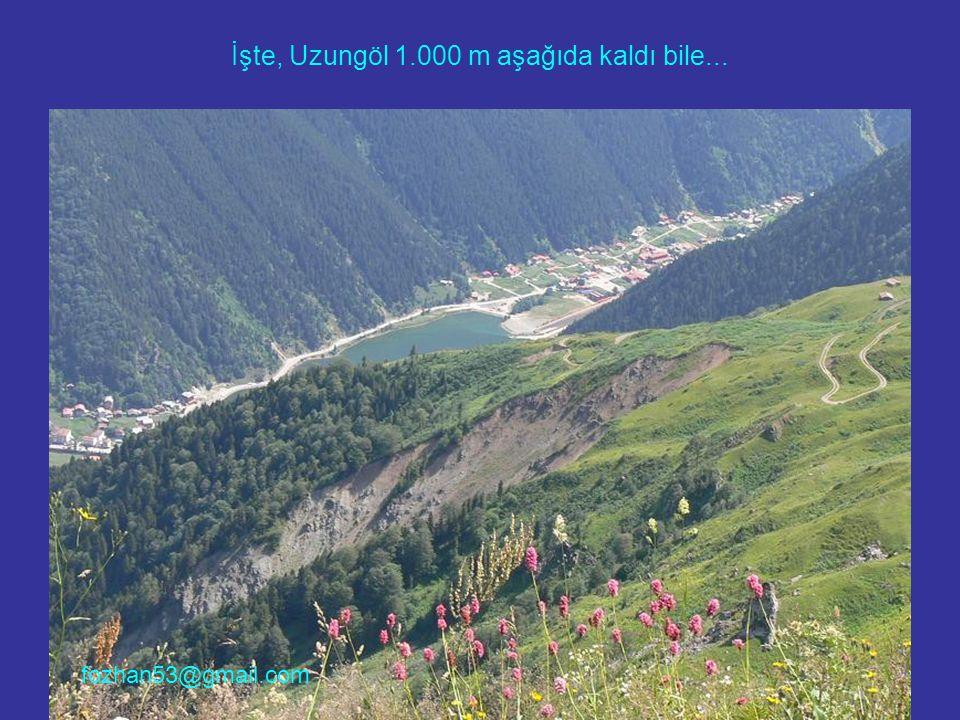 İşte, Uzungöl 1.000 m aşağıda kaldı bile... fozhan53@gmail.com