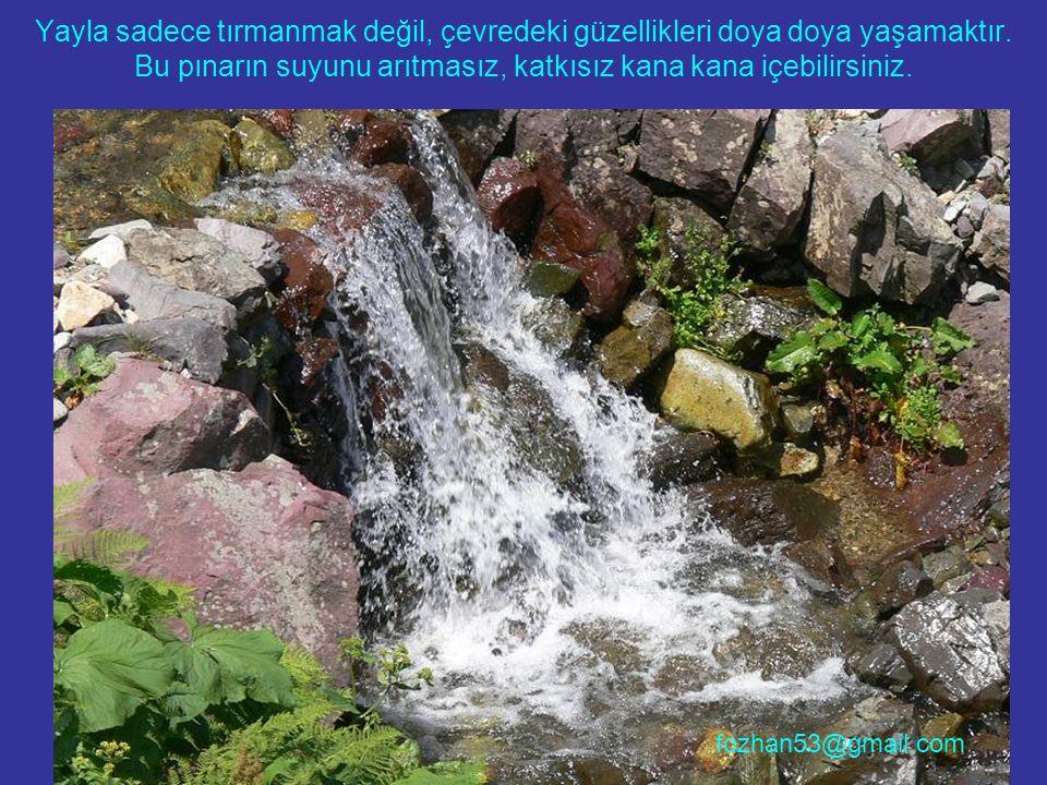 Yayla sadece tırmanmak değil, çevredeki güzellikleri doya doya yaşamaktır. Bu pınarın suyunu arıtmasız, katkısız kana kana içebilirsiniz. fozhan53@gma