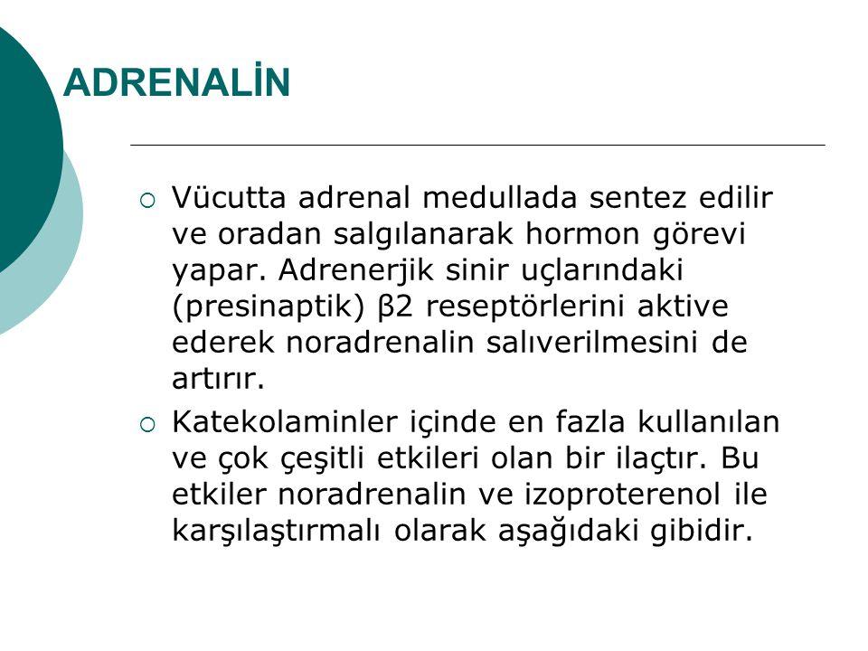 ADRENALİN  Vücutta adrenal medullada sentez edilir ve oradan salgılanarak hormon görevi yapar. Adrenerjik sinir uçlarındaki (presinaptik) β2 reseptör
