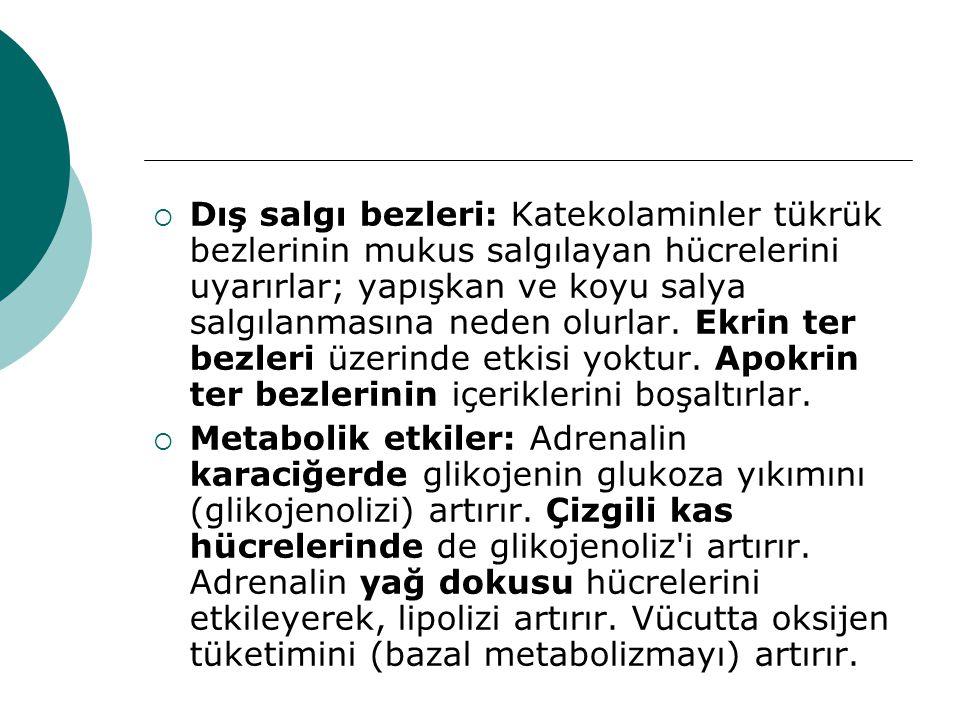  Metaraminol: Noradrenalin'e benzer.Akut hipotansif durumlarda, i.v.