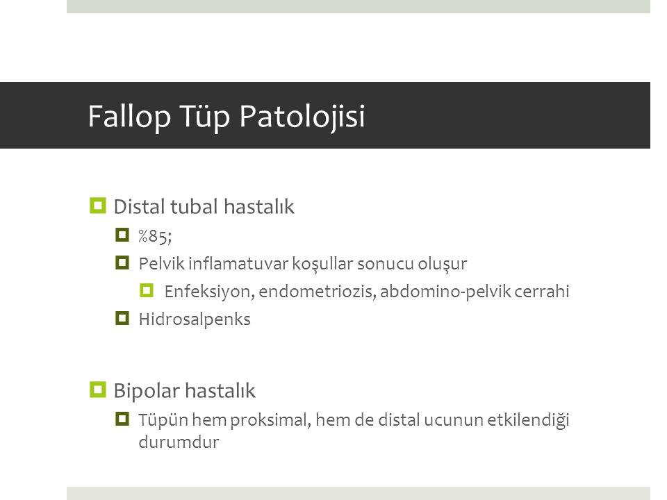 Fallop Tüp Patolojisi  Distal tubal hastalık  %85;  Pelvik inflamatuvar koşullar sonucu oluşur  Enfeksiyon, endometriozis, abdomino-pelvik cerrahi