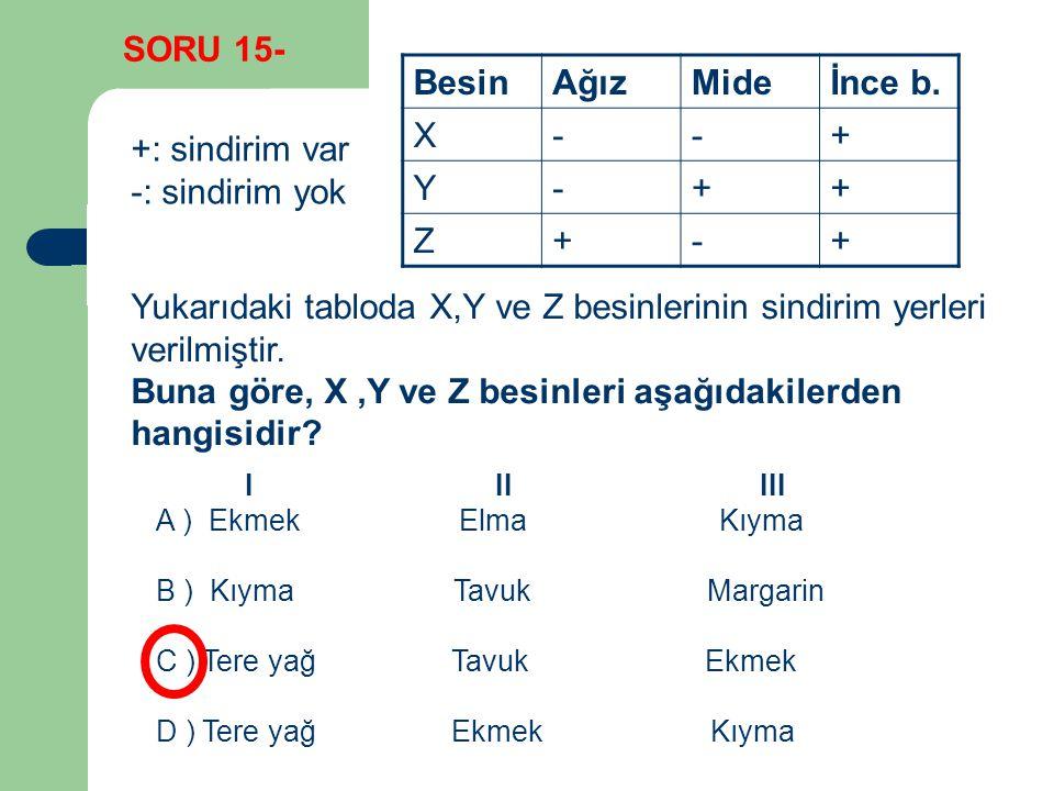 BesinAğızMideİnce b. X--+ Y-++ Z+-+ +: sindirim var -: sindirim yok Yukarıdaki tabloda X,Y ve Z besinlerinin sindirim yerleri verilmiştir. Buna göre,