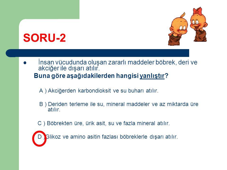 SORU-2 İnsan vücudunda oluşan zararlı maddeler böbrek, deri ve akciğer ile dışarı atılır. Buna göre aşağıdakilerden hangisi yanlıştır? A ) Akciğerden