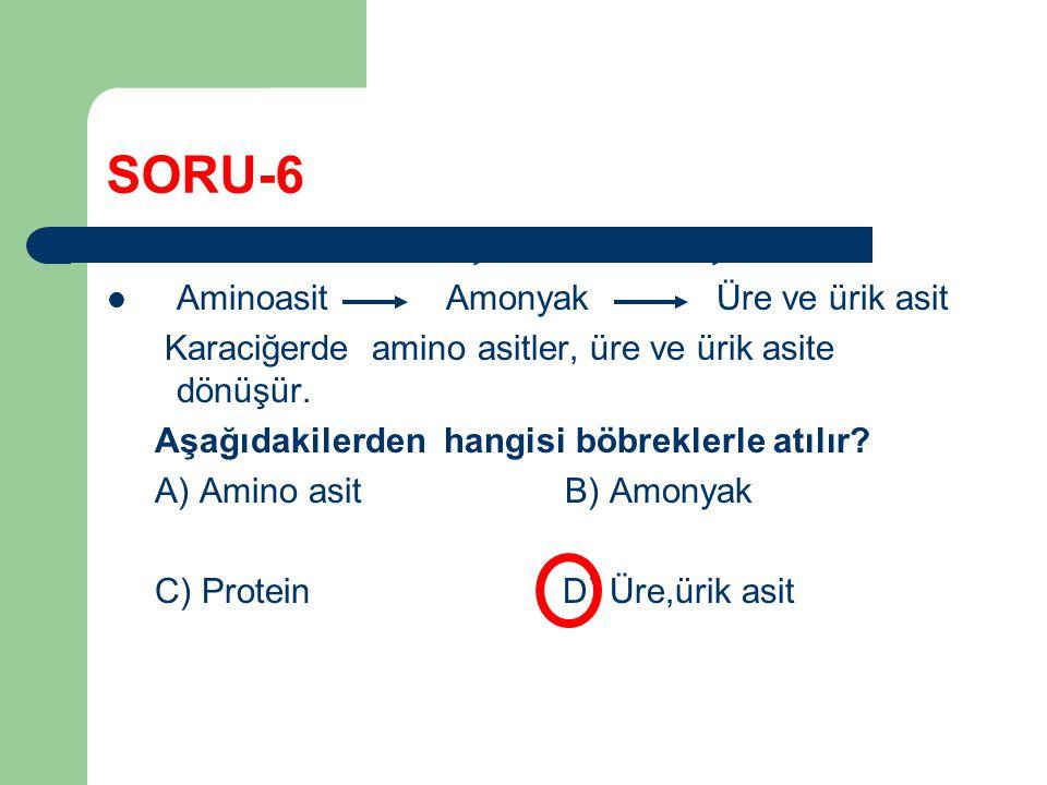 SORU-6 Aminoasit Amonyak Üre ve ürik asit Karaciğerde amino asitler, üre ve ürik asite dönüşür. Aşağıdakilerden hangisi böbreklerle atılır? A) Amino a