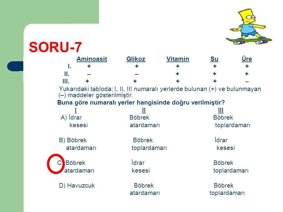 SORU-7 Aminoasit Glikoz Vitamin Su Üre I. + + + + + II. – – + + + III. + + + + – Yukarıdaki tabloda; I, II, III numaralı yerlerde bulunan (+) ve bulun