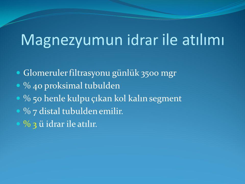 Magnezyumun idrar ile atılımı Glomeruler filtrasyonu günlük 3500 mgr % 40 proksimal tubulden % 50 henle kulpu çıkan kol kalın segment % 7 distal tubul